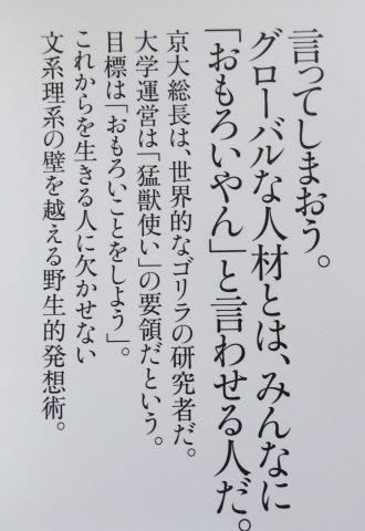 京大式カバー袖